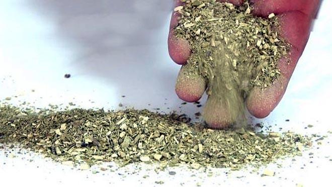 La yerba mate, sus efectos contra el Covid-19